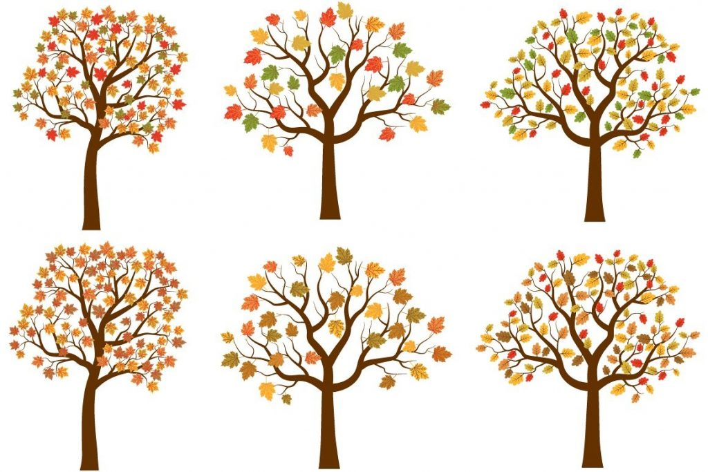 autumn trees clipart set cute fall tree red yellow leaves