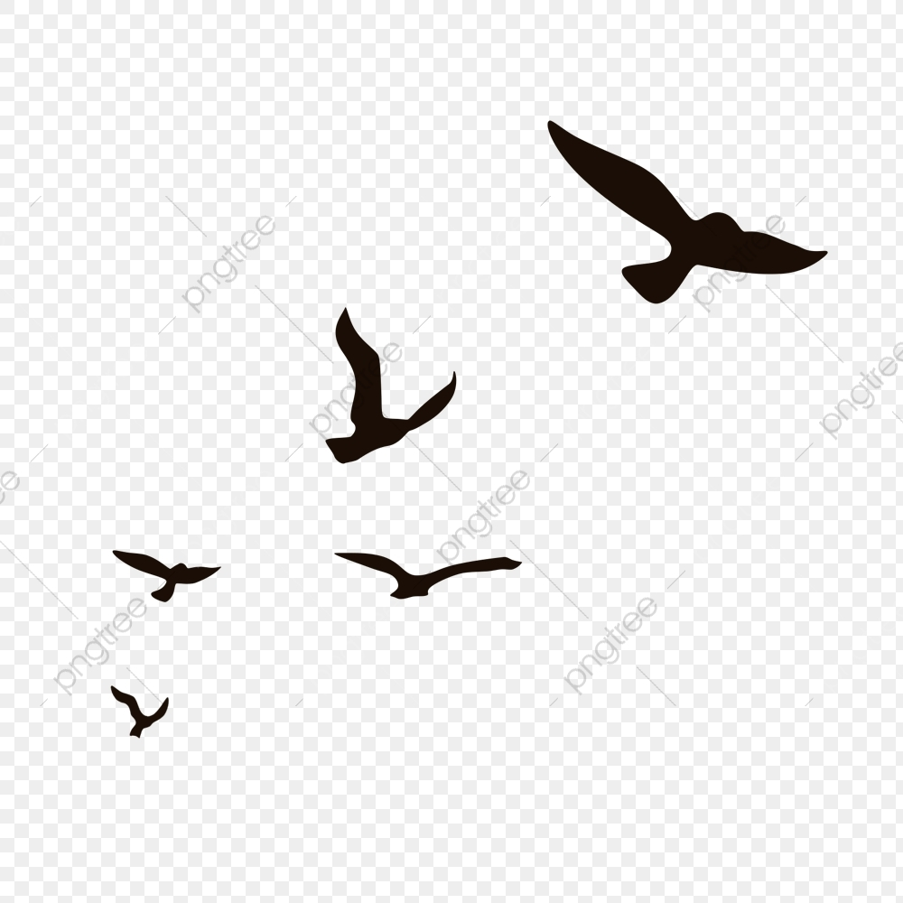 bird clipart png images 5100 bird png clip art for free