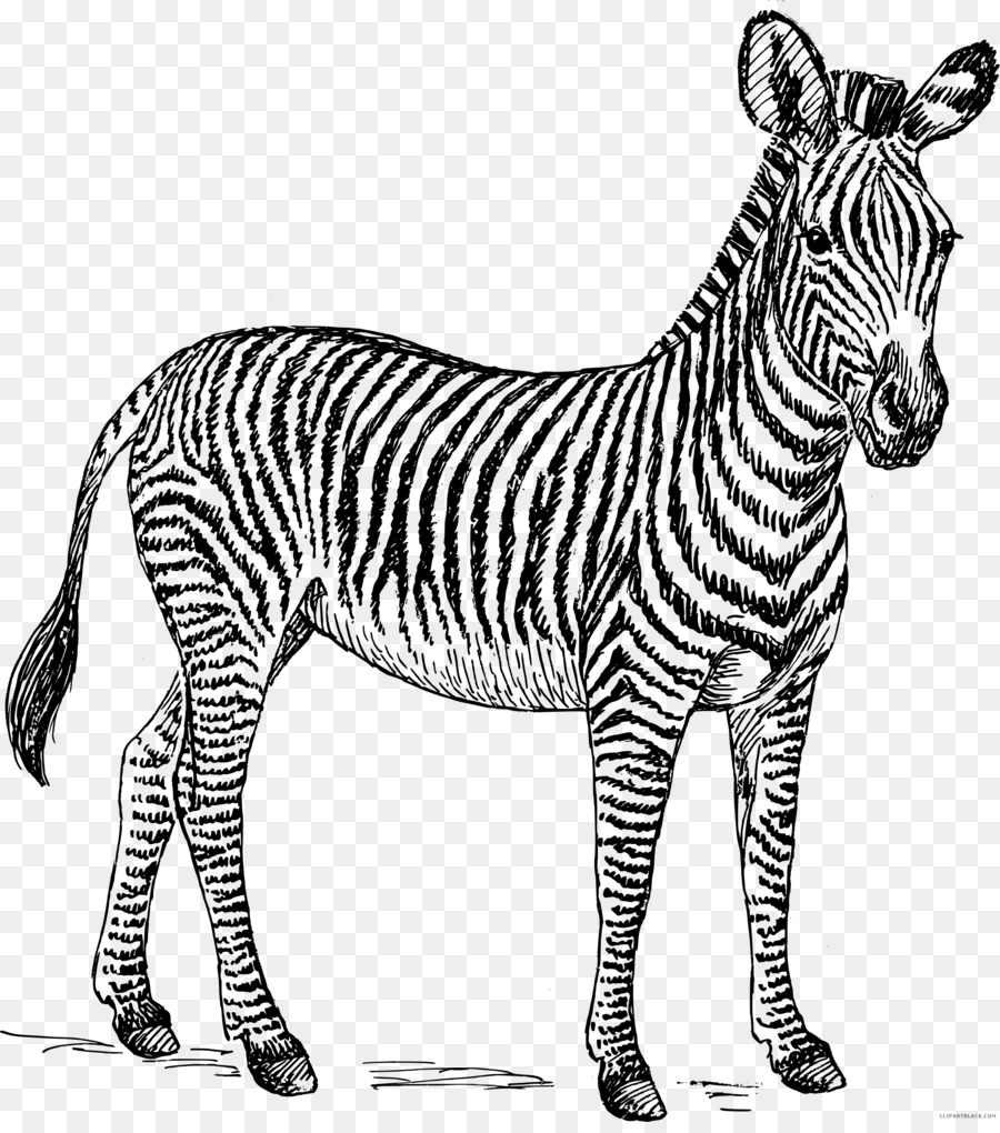 book black and white clipart animal transparent clip art