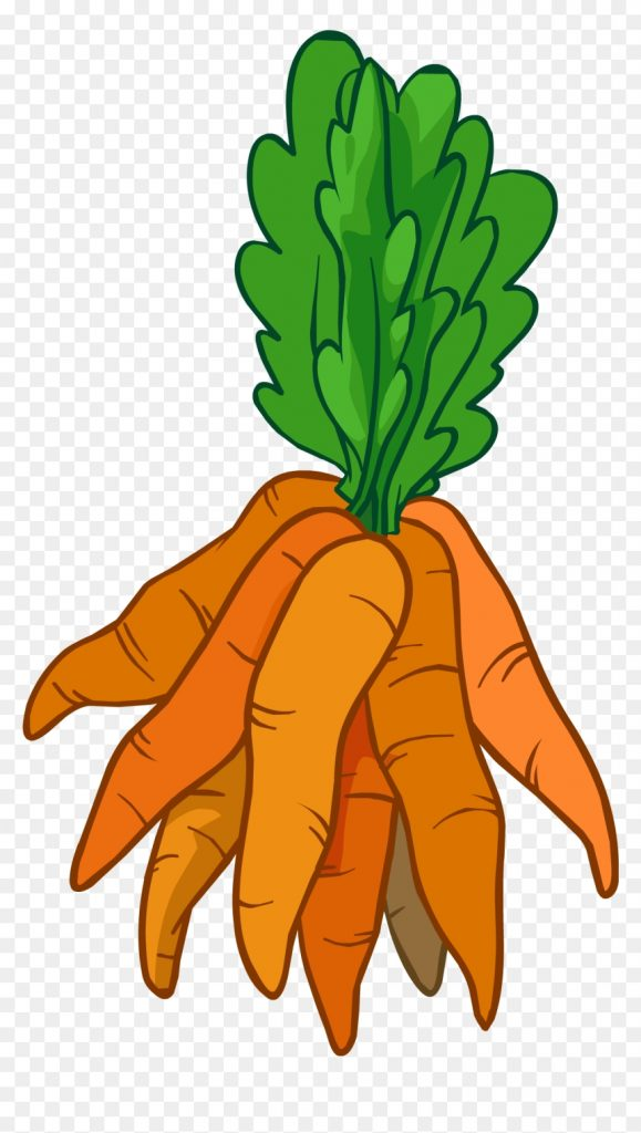 bunch of carrots clipart hd png download vhv