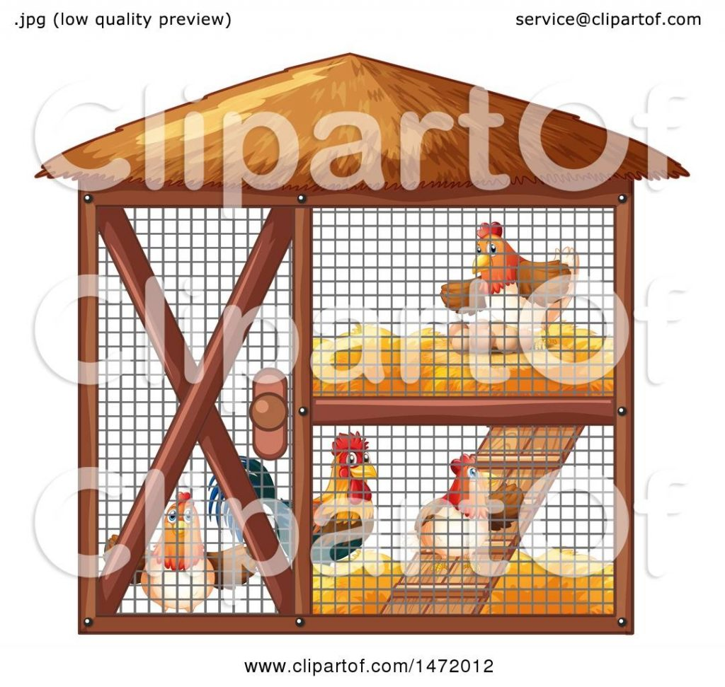 clipart of a rooster and hens in a chicken coop royalty