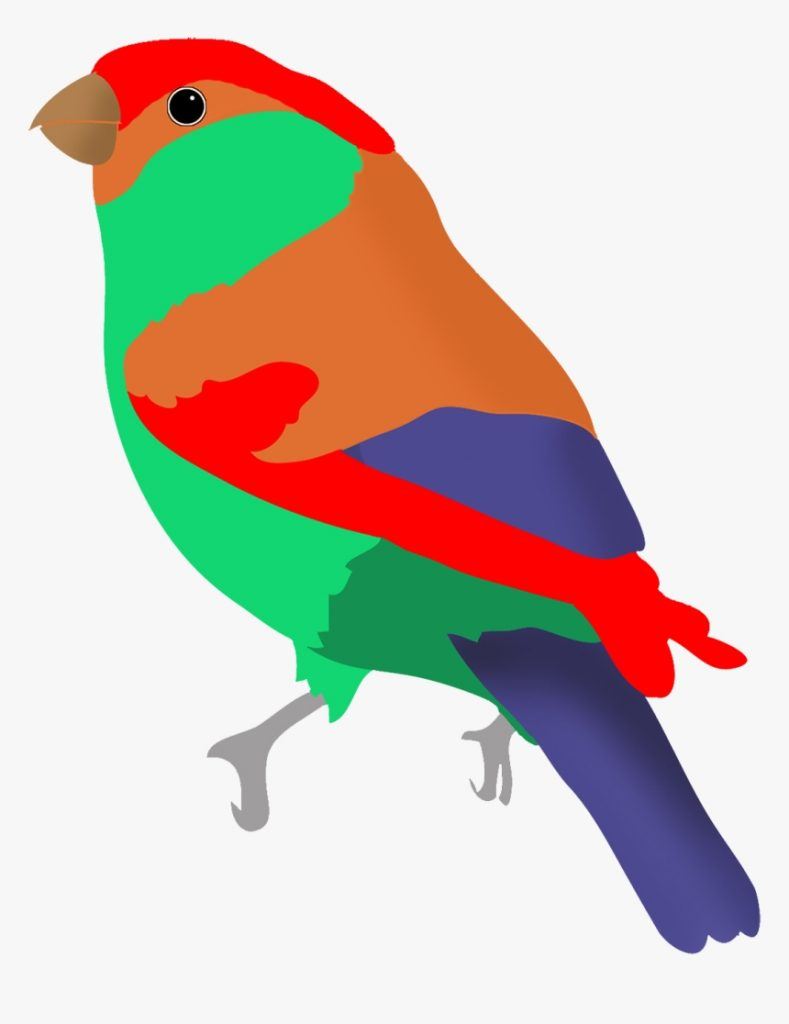 colorful bird in fantasy colors clipart birds flying