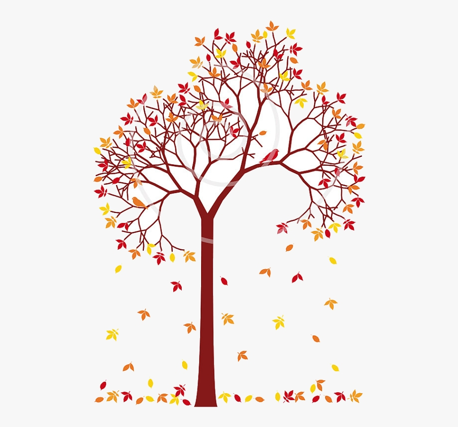 fall tree colorful leaves and birds dig trees clip art of