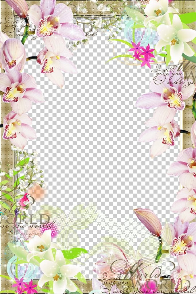 frame spring flower border png clipart free cliparts