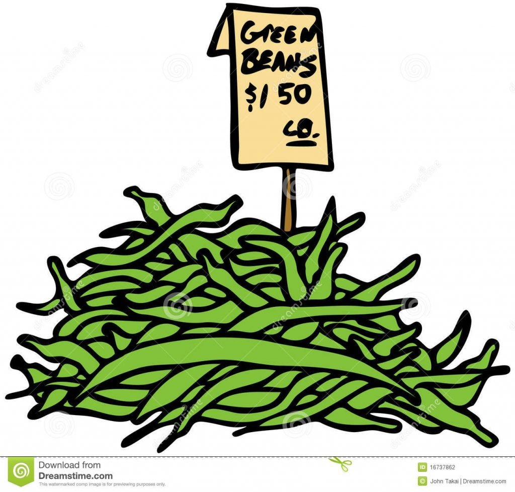 green beans stock vector illustration of isolated clipart