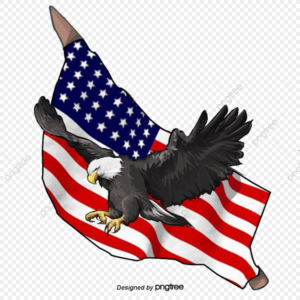hand painted elements of american eagle and american flag