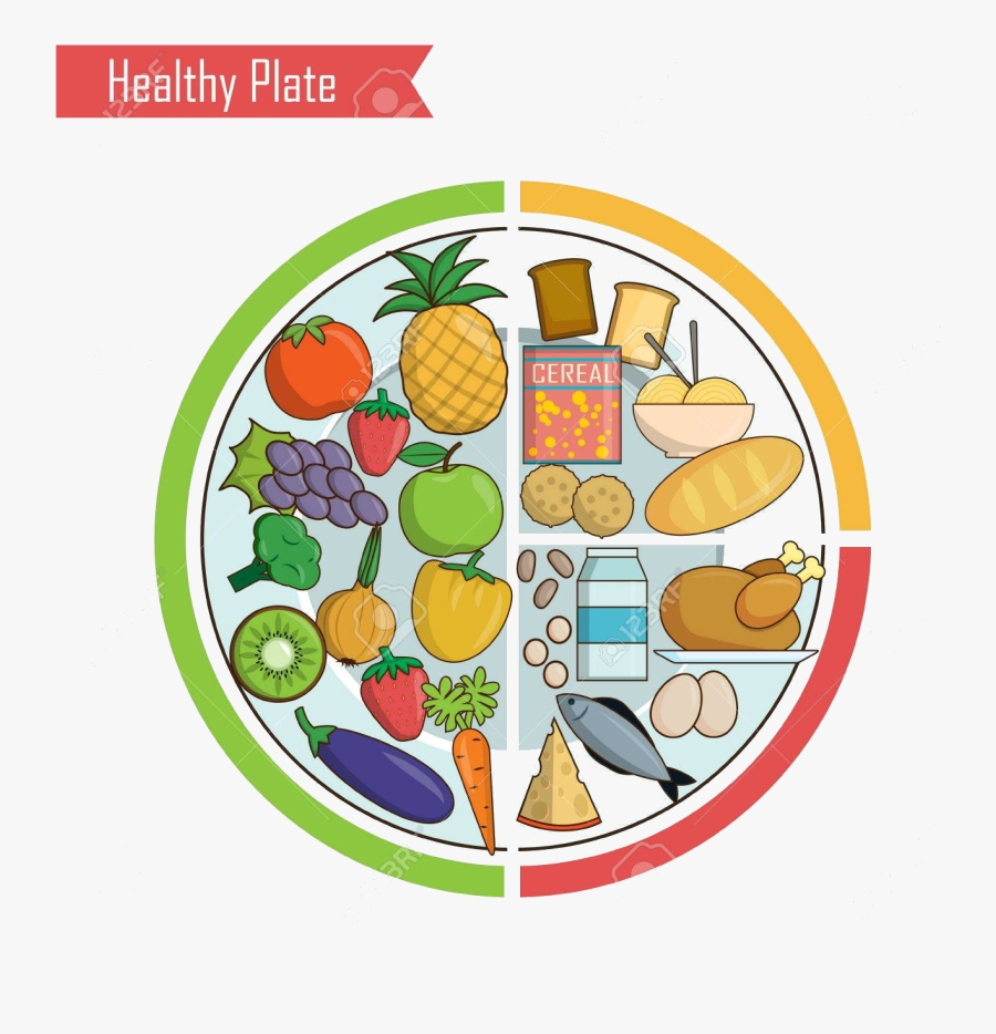 healthy food infographic chart illustration of plate
