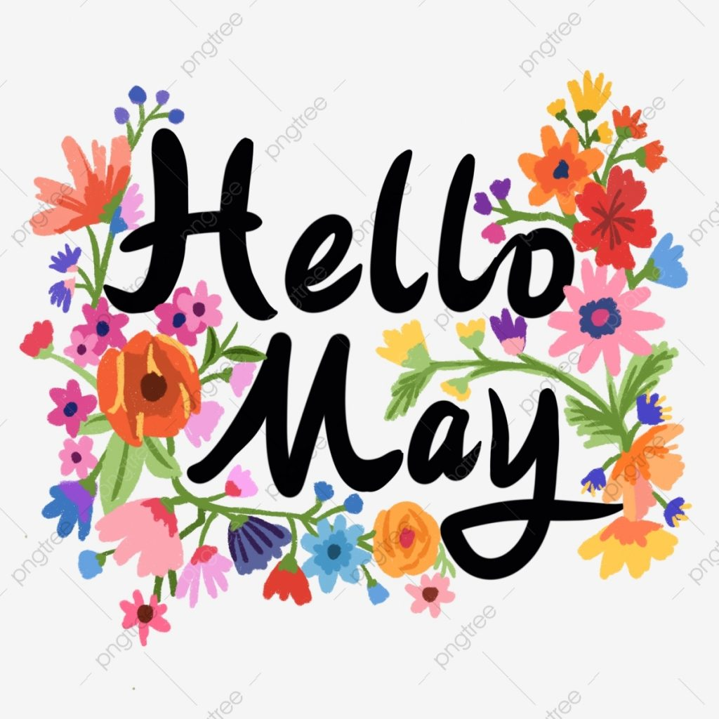 hello may flowers creative font may hello there may png
