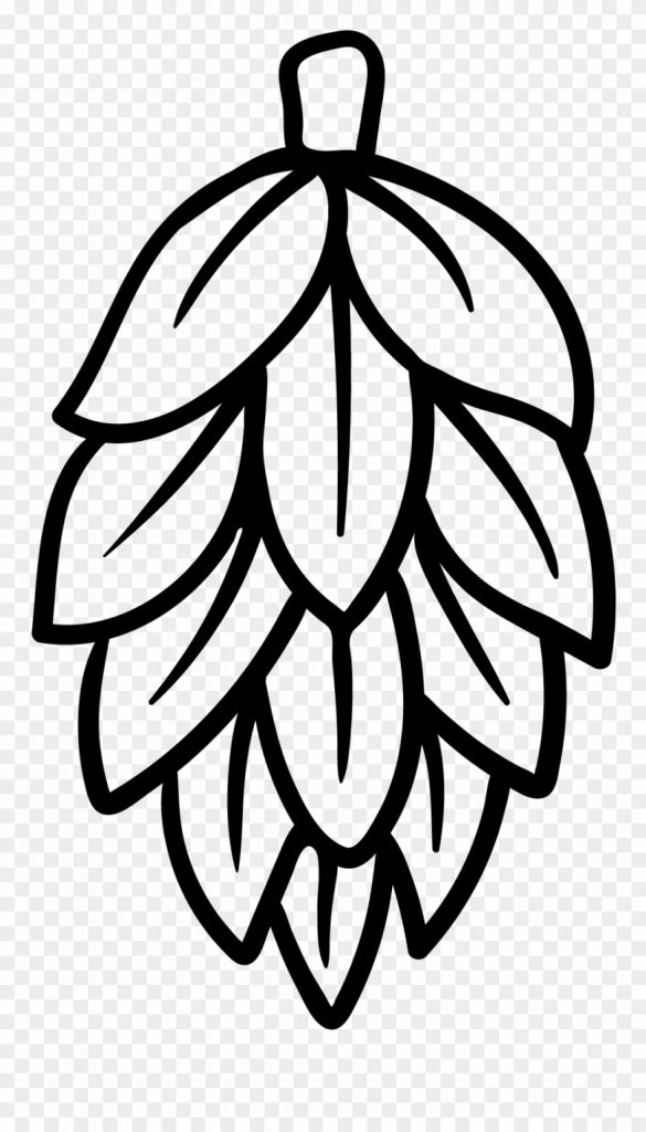hops black and white beer hops clipart 4087912 pinclipart