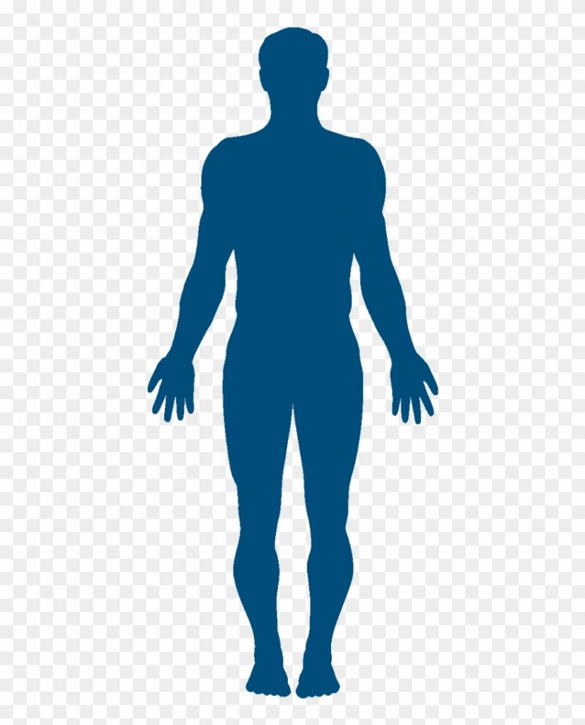 human body silhouette clipart 3354196 pinclipart