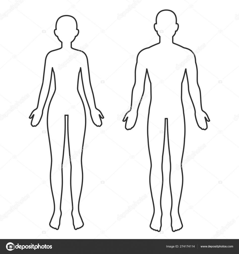 human girl outline clipart woman body shape outline and