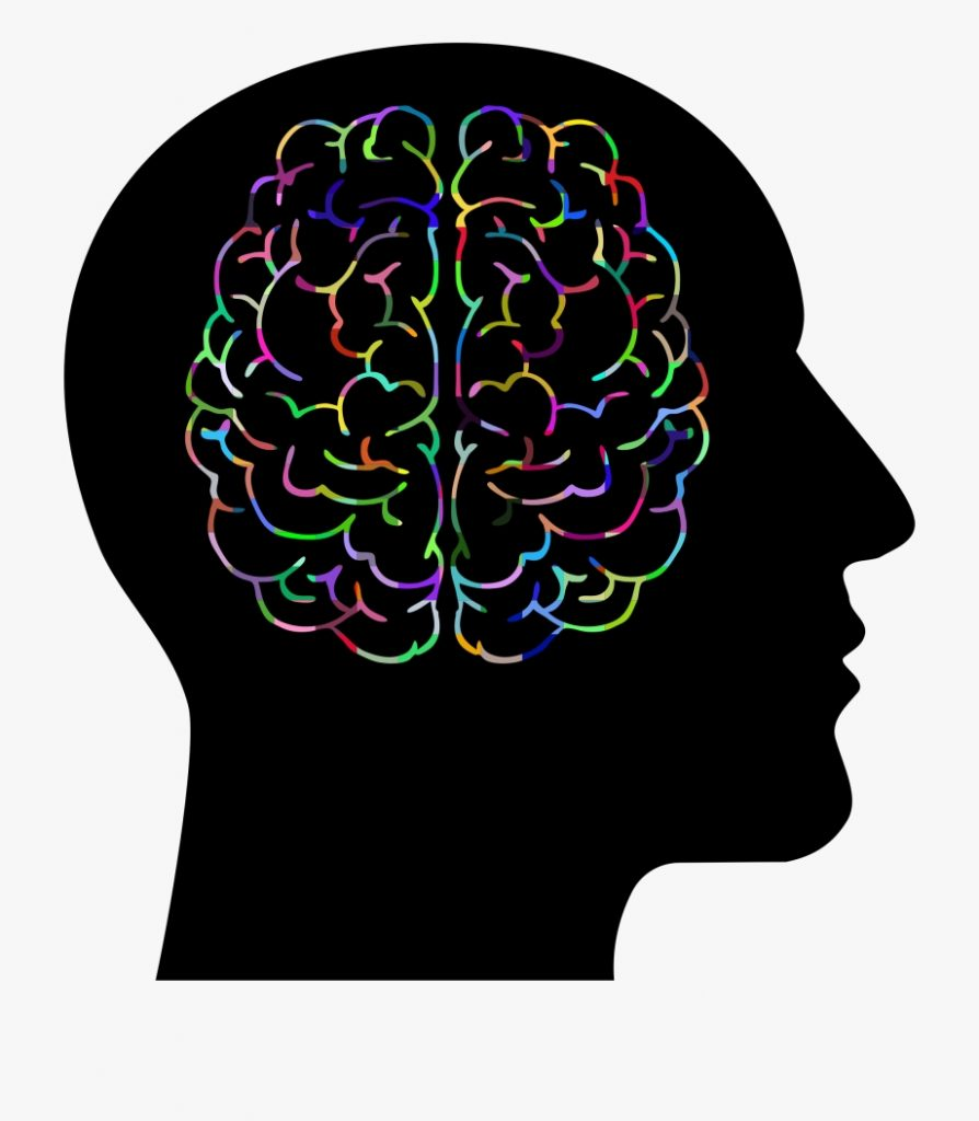 image royalty free download psychology clipart brain brain