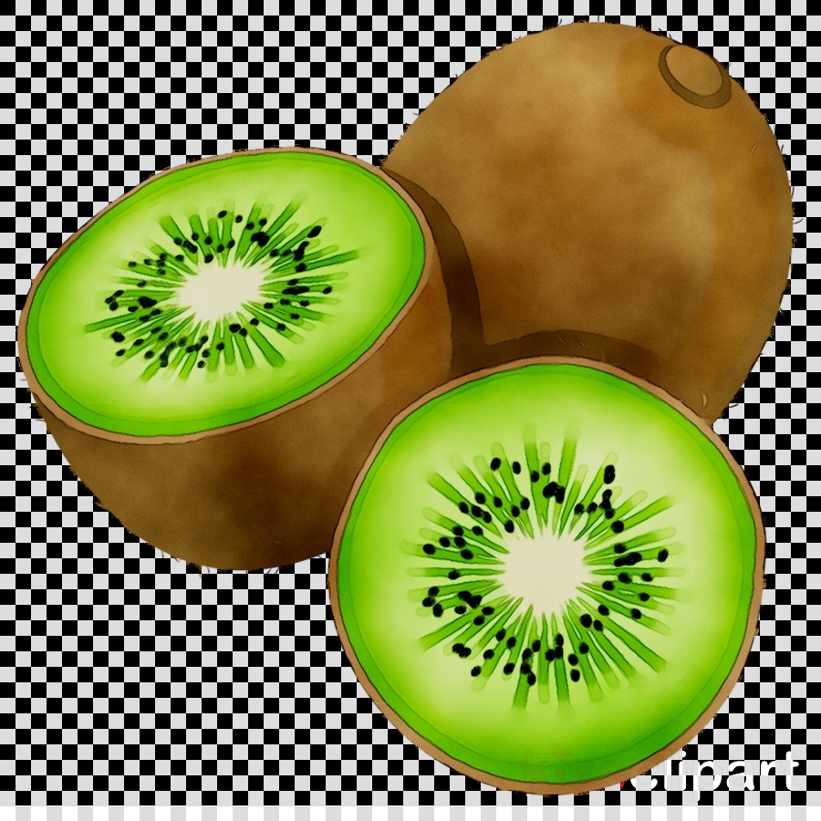 kiwi bird clipart clipart food eating health