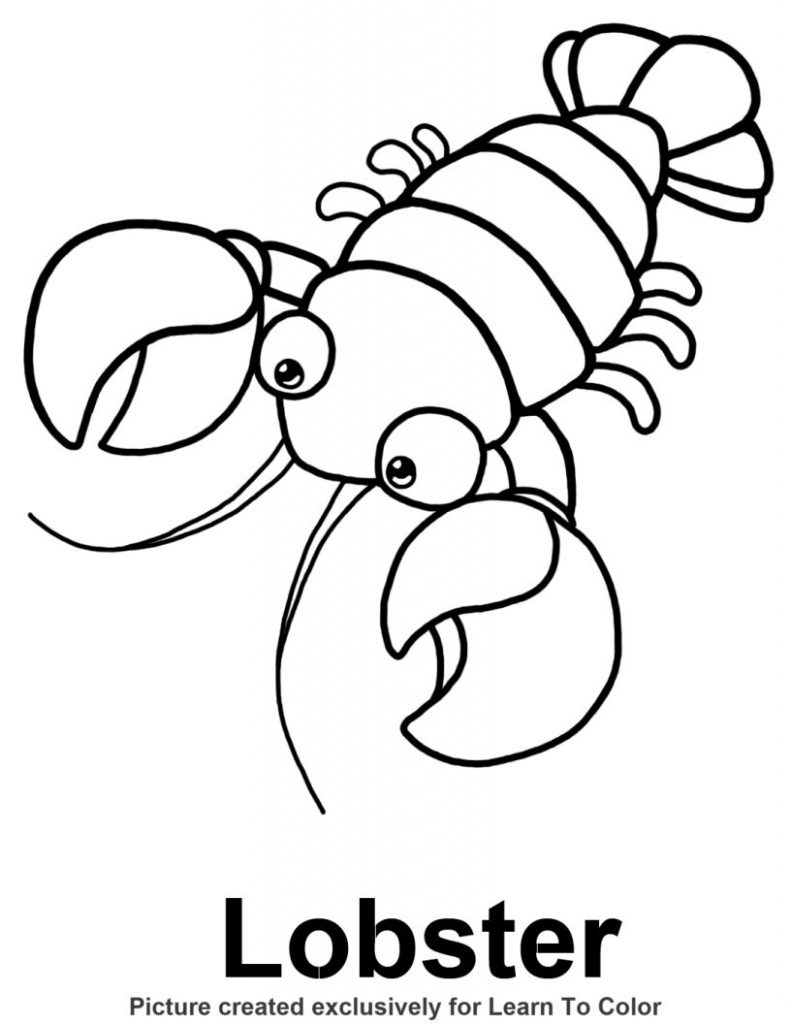 lobster coloring page butterfly coloring page animal