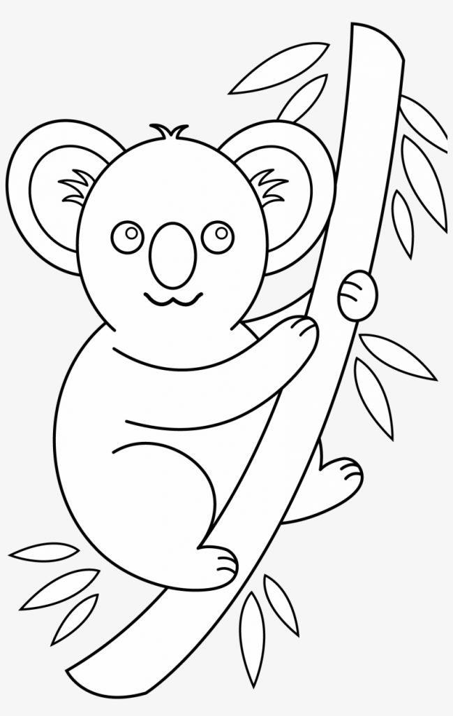 photos of koala clip art black and white bear cute easy