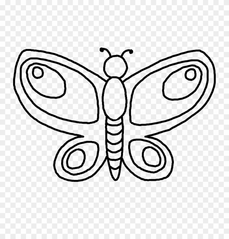 printable butterfly outline coloring pages pattern clipart