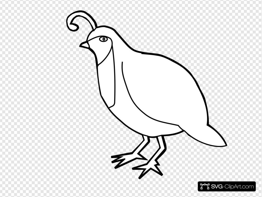 quail outline svg vector quail outline clip art svg clipart