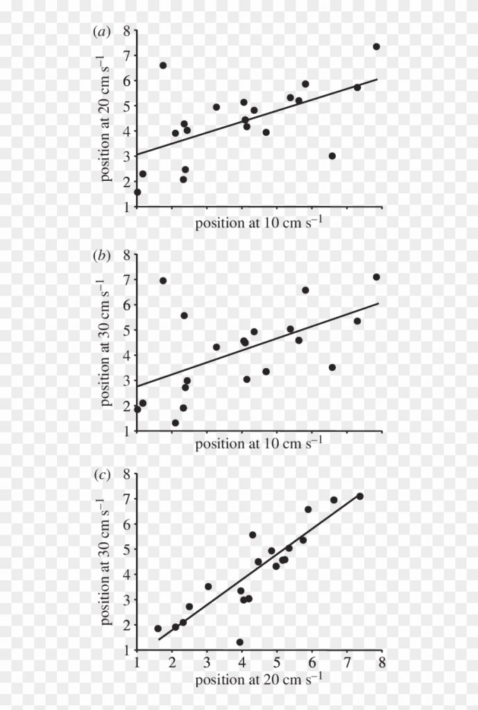relationships among mean positions of focal fish in plot