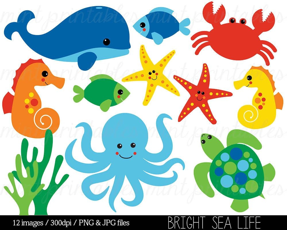 sea animal clipart under the sea ba 85245 png images