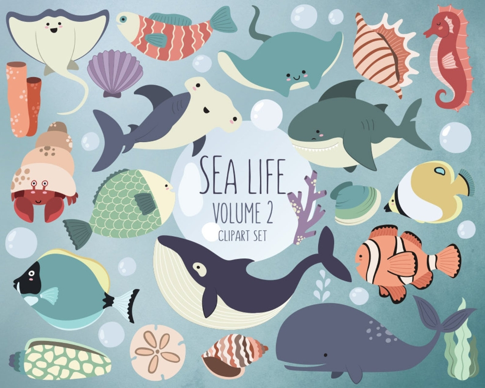 sea life clipart volume 2 ocean clip art set 24 hi res