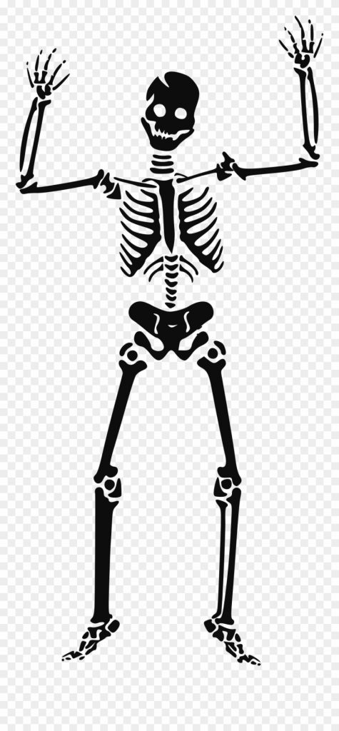 skeleton clipart transparent halloween skeleton clipart