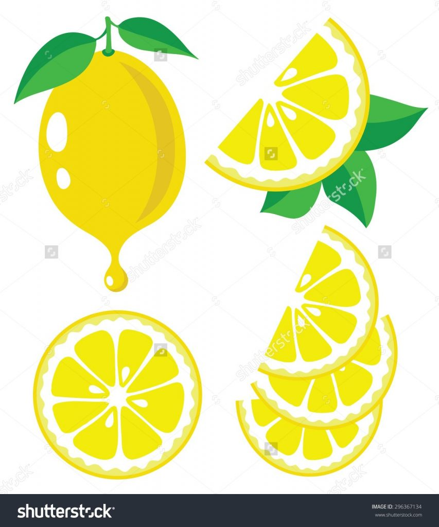 stock vector vector lemon lemon fruit slices and drop of
