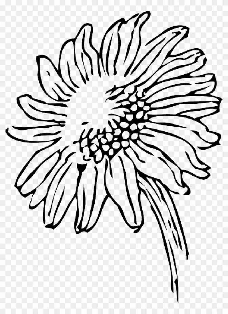 sunflowers clip art black and white png sunflower black