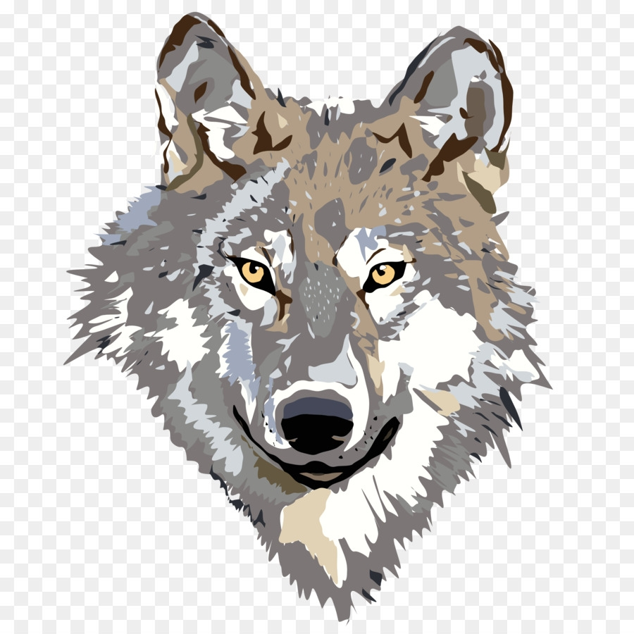 wolf cartoon clipart illustration drawing wolf