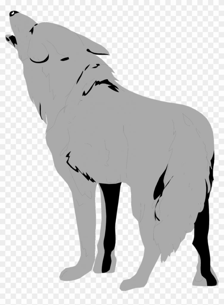 wolf clipart clear background transparent background wolf
