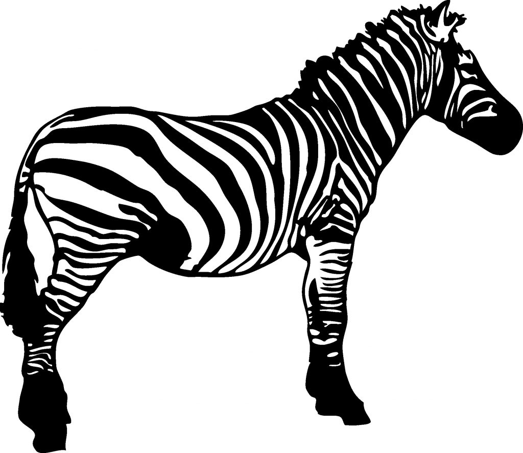 zebra black and white clipart clip art zebra black and