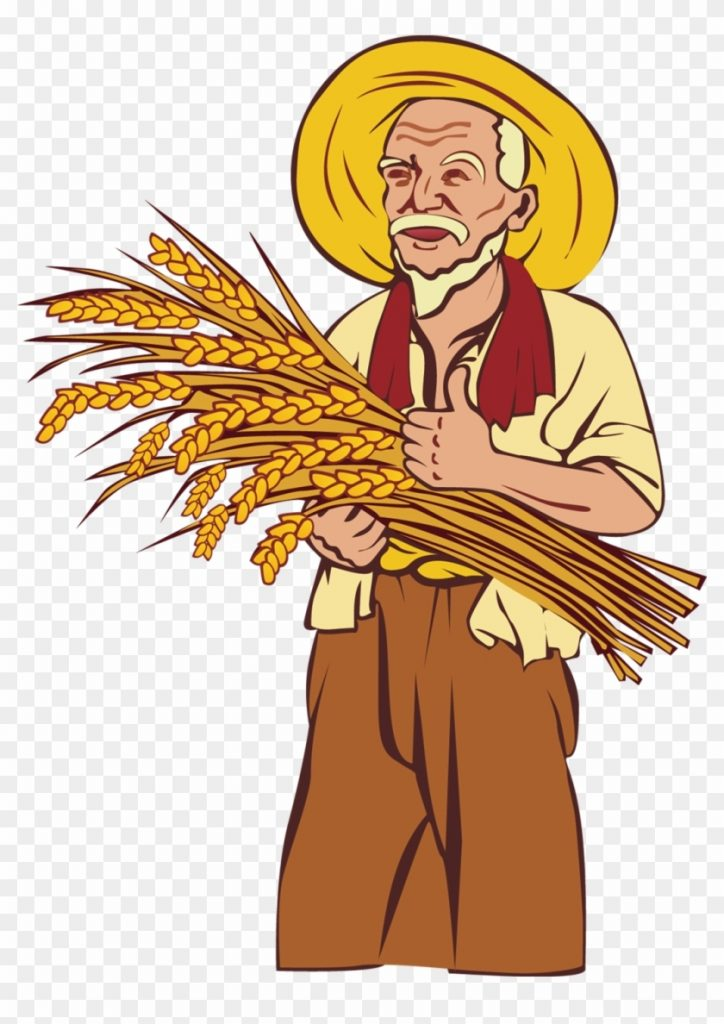 picture library library farming clipart rice farmer gambar