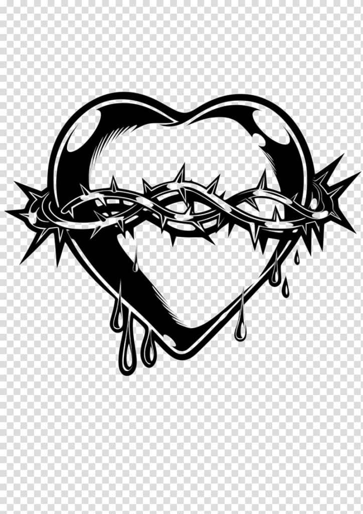 thorns spines and prickles crown of thorns heart anatomy